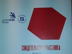"VI Финал Национального Чемпионата ""Молодые профессионалы» (WorldSkills Russia)"