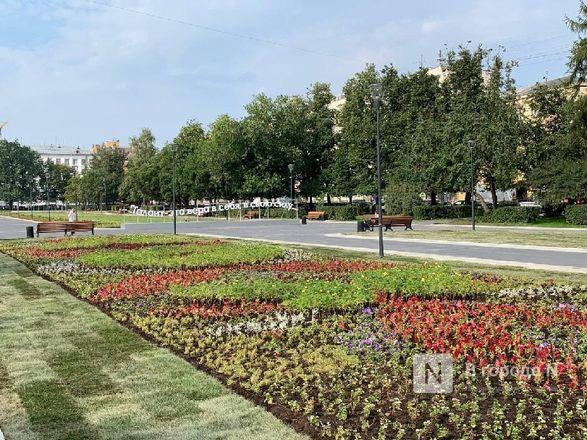 Сквер на площади Горького открыли для нижегородцев - фото 7