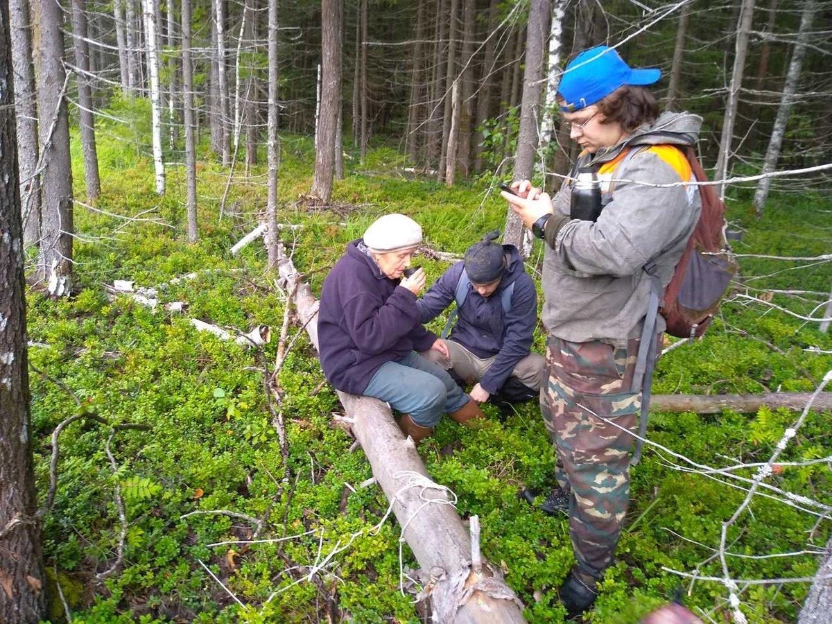 Волонтеры спасли бабушку, трое суток блуждавшую в семеновских лесах - фото 1