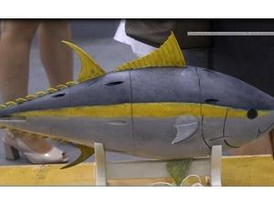 Уникальное подводное судно в форме рыбы разработали нижегородские ученые