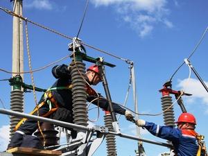 Два скотоводческих предприятия в Нижегородской области подключили к электросети