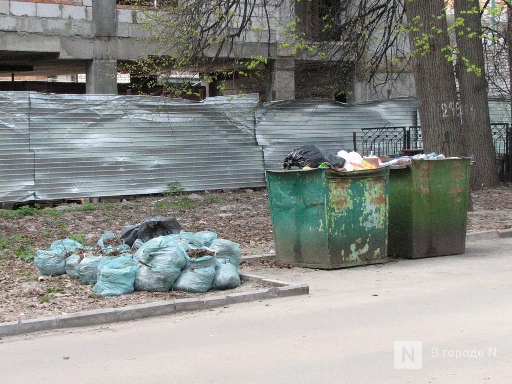 Нижегородская область заняла шестое место среди самых замусоренных регионов России - фото 1