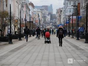 5 млрд рублей материнского капитала получили нижегородские семьи в 2019 году