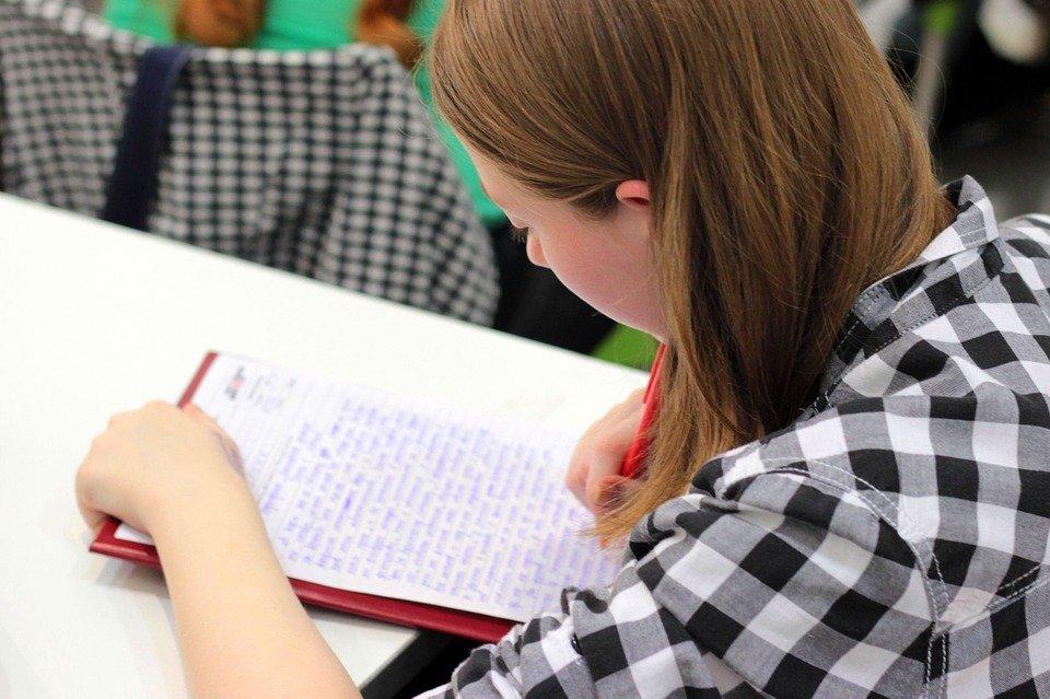 «Ду ю спик инглиш?» - почему выпускники российских школ не говорят по-английски - фото 3