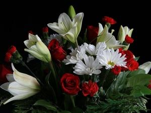 Врач-инфекционист нижегородской больницы Мария Скрипачева скончалась от коронавируса