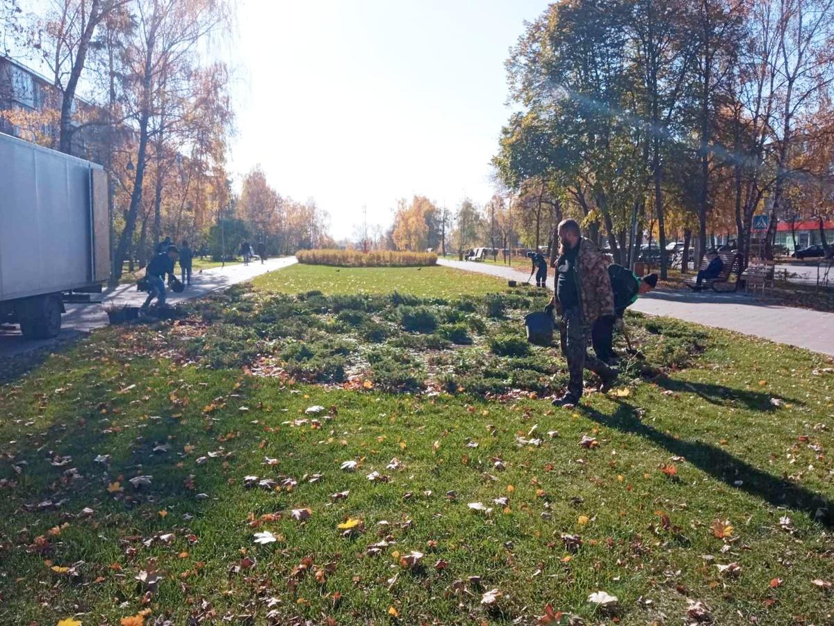 Новые растения высадили в сквере на улице Никиты Рыбакова - фото 2