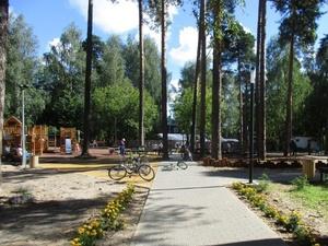 Канатная дорога и батуты появились в городском парке в Кулебаках