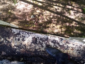 Рабочий погиб во время ремонта крыши в городецком лагере