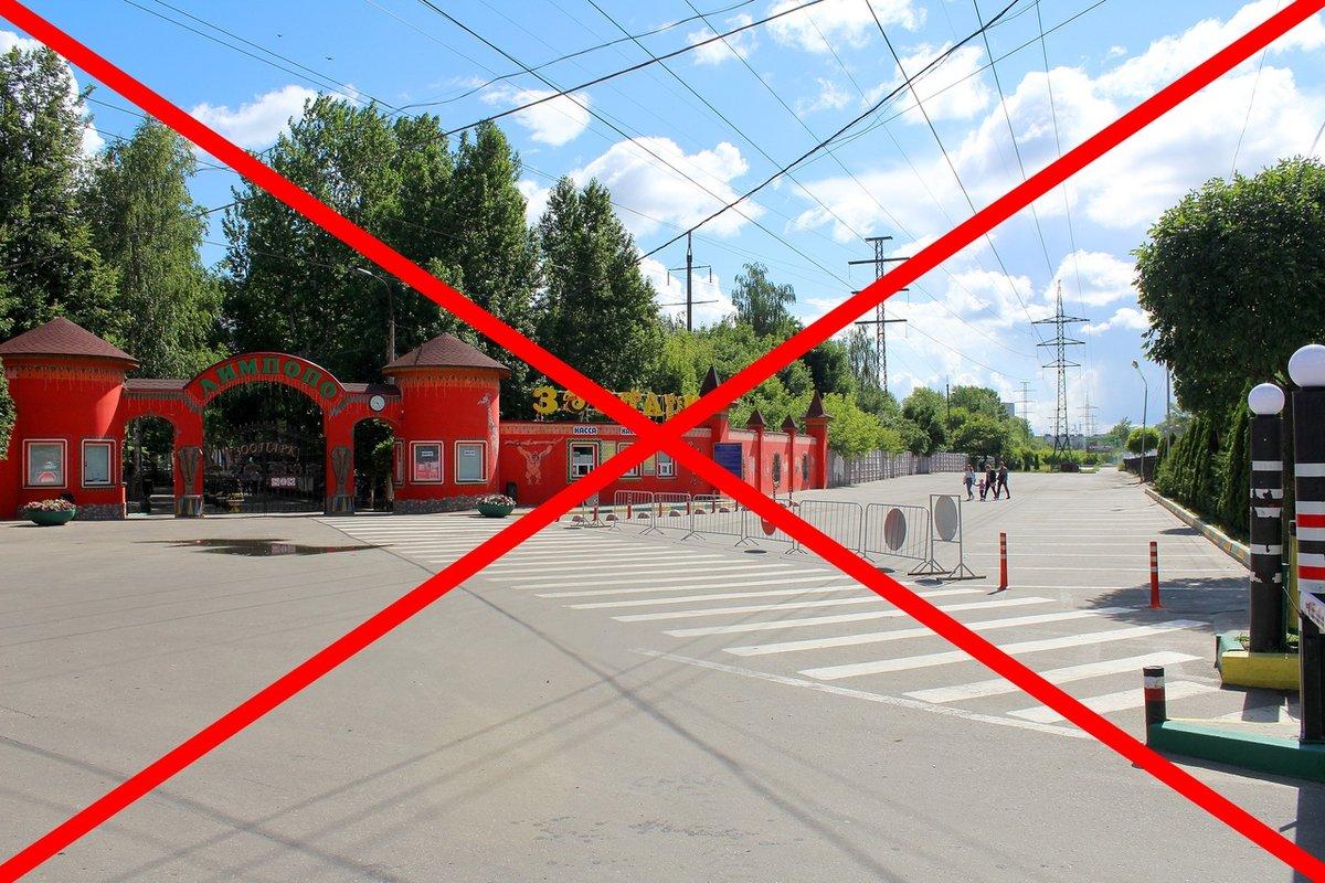 Около нижегородского зоопарка запретили парковаться - фото 1