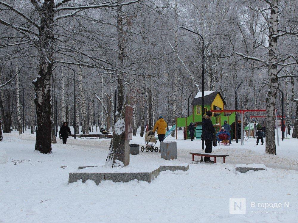 Дендрарий и фонтан: что хотят видеть нижегородцы в парке Пушкина - фото 1