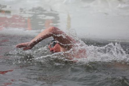 Заплыв «Ока-Волга» в Нижнем Новгороде посвятят празднику Победы