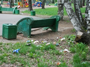 Зеленые легкие города: возможно ли спасти парки Нижнего Новгорода