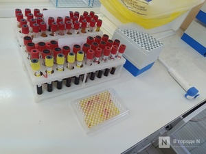 Более 211 тысяч нижегородцев сдали тест на коронавирус