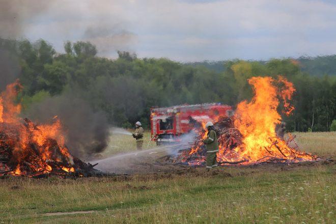 На вертолетах и квадроциклах: пожарные боролись с условным лесным возгоранием под Дзержинском - фото 4